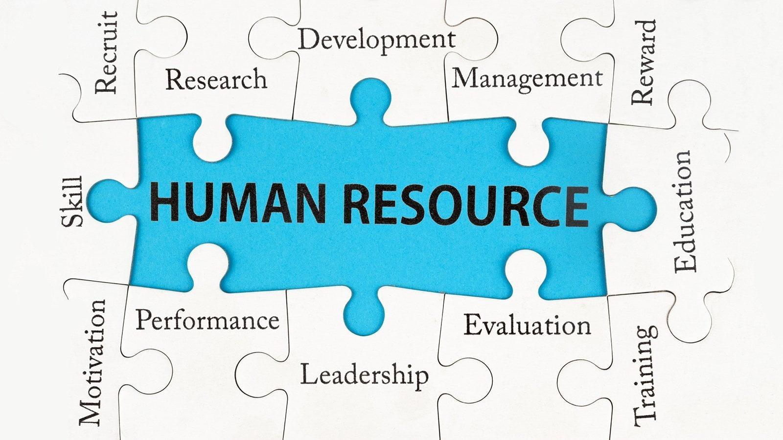 İnsan Kaynakları / Yazar Başvurusu