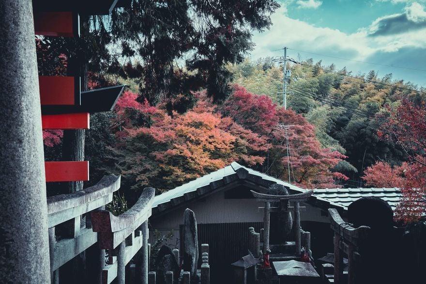 Osaka ve Kyoto Fotoğrafları