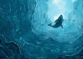 Mavi Balina Oyunu Nedir? Mavi Balina Oyun Görevleri Neler?