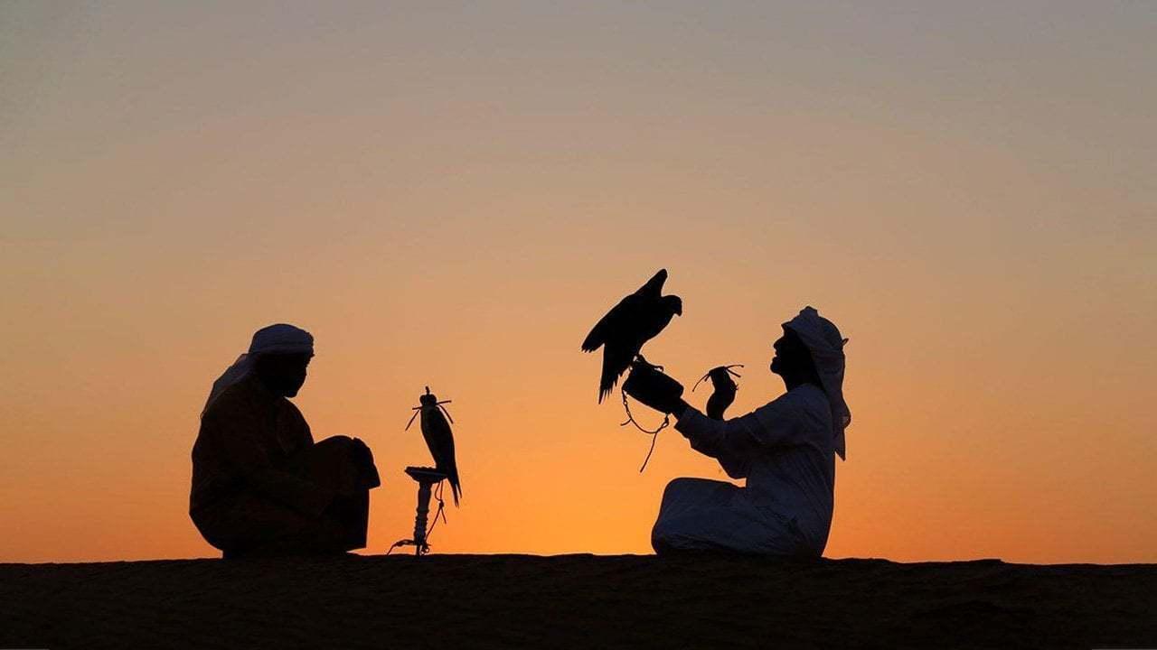 Katar Şahin Festivali